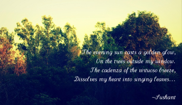 The evening Sun - Poem - Sushant